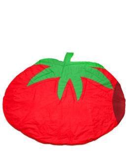 pomidor_001_1000x1200